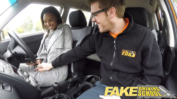 Fake Driving School - teaching teen leaners - 100% pass rate